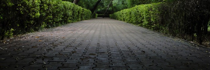 Road to green recovery